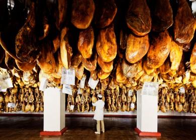Gunnar Knechtel Photography, Spanien, Schwein, fotografiert Febr