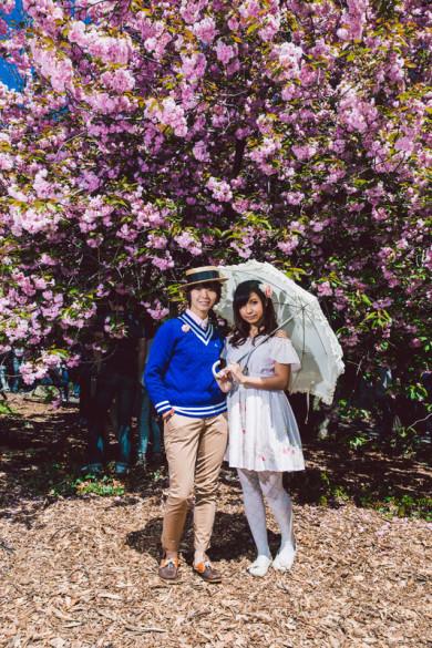 Sakura Matsuri Cherry Blossom Festival in Brooklyn