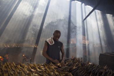 Fish smoking at Tanji, Gambia.