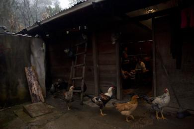 Chiapas_002