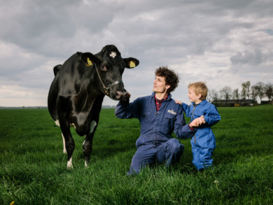 Farmer with son and Veneriete Holstein milk cow for Friesland Campina Campaign