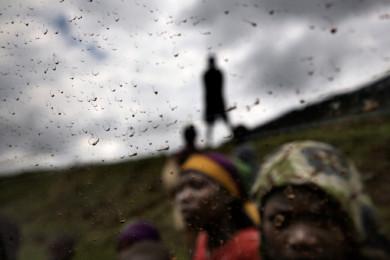 On the road between Bururi and Bujumbura, in Burundi. November 2009.