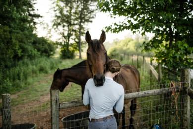 Olympic Equestrian