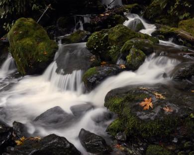 Lake_Qunault_waterfall