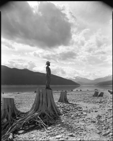Stumps at low water, Kinbasket Lake, BC
