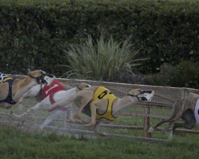 racing_11
