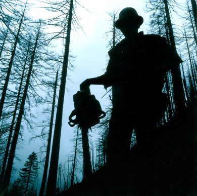 Forest Defenders