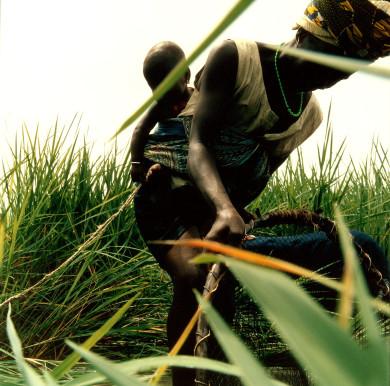 The Art of the West African Doundounba