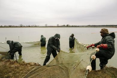 Mississippi delta poverty story