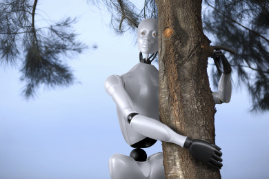 The Robots_3
