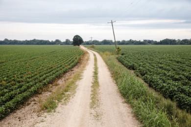 RWJF - Allen County Kansas