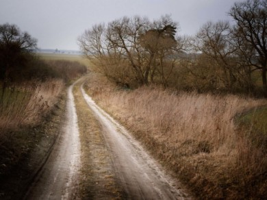 Germany, February  2014 - a pathway in the North-East region of Mecklenburg.
