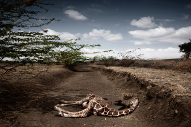 SDL - Kenya Drought