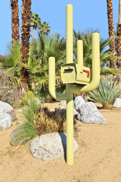 cactusmailbox